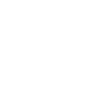 Michael-Boardman-white-logo-300x